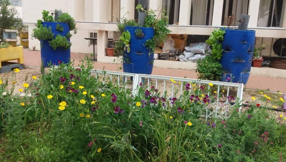 מאי 2016 חוק הנגישות בגינה הטיפולית. ביקור וסדנה בבית העיוור